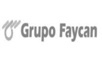 Grupo Faycan